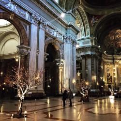 Gli alberi e la navata