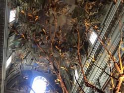 I rami di Mastro 7 e gli affreschi di Andrea Pozzo
